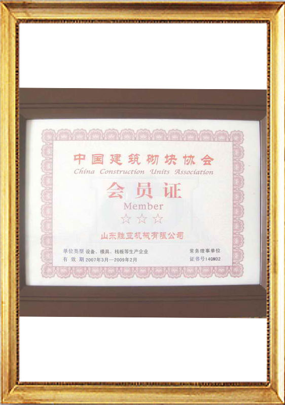 member of the china cement blcok associatioon